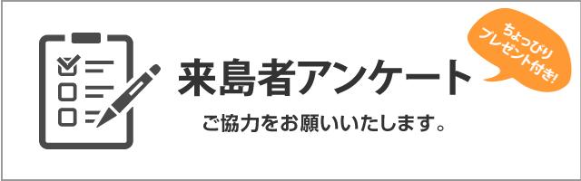 来島者アンケート