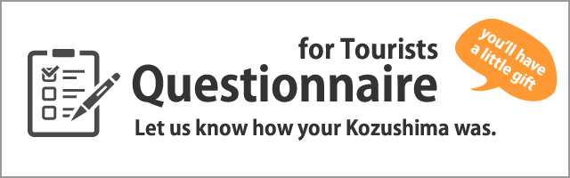 Questionnaire for Tourist